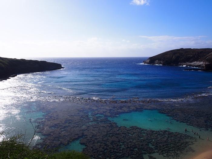 【ハワイ02】The Busで行くオアフ島随一のシュノーケリングスポット・ハナウマ湾! (8)