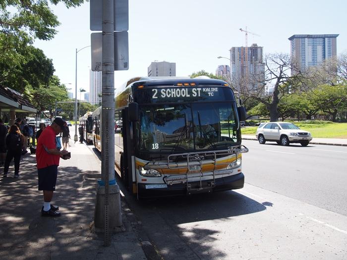 【ハワイ02】The Busで行くオアフ島随一のシュノーケリングスポット・ハナウマ湾! (4)