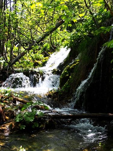 【クロアチア03】青と緑の美しいコントラスト。。世界遺産プリトヴィッツェ湖群国立公園 (12)