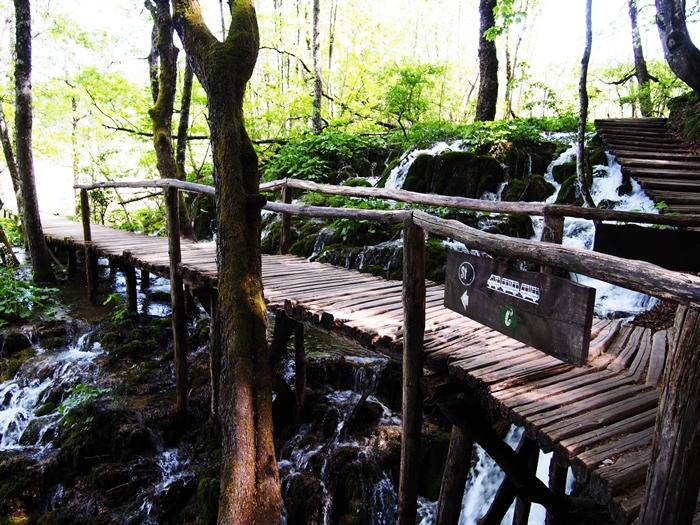 【クロアチア03】青と緑の美しいコントラスト。。世界遺産プリトヴィッツェ湖群国立公園 (26)