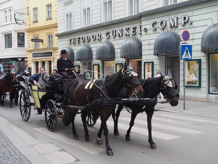 【オーストリア02】ザッハトルテも忘れずに!一日でウィーンの町を観光♪ (29)