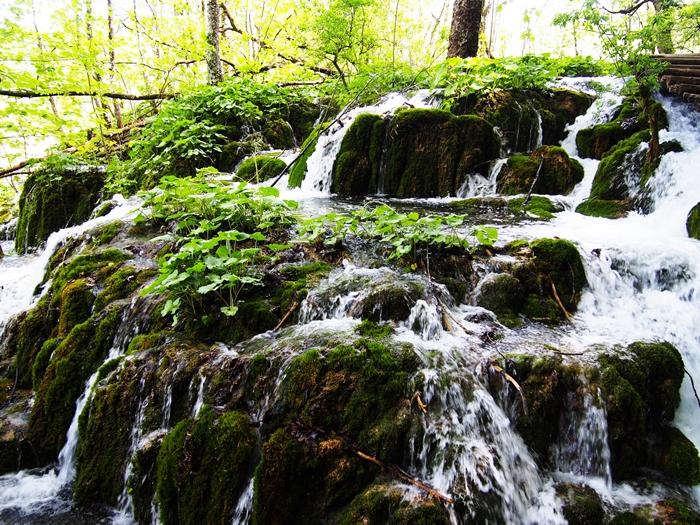 【クロアチア03】青と緑の美しいコントラスト。。世界遺産プリトヴィッツェ湖群国立公園 (27)
