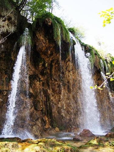 【クロアチア03】青と緑の美しいコントラスト。。世界遺産プリトヴィッツェ湖群国立公園 (19)