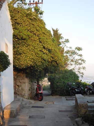 【クロアチア06】青い海とオレンジ色の屋根…ジブリのモデル、ドゥブロヴニク観光2 (5)