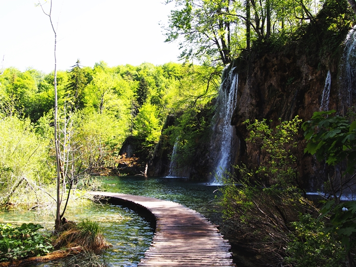 【クロアチア03】青と緑の美しいコントラスト。。世界遺産プリトヴィッツェ湖群国立公園 (20)