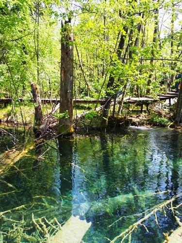 【クロアチア03】青と緑の美しいコントラスト。。世界遺産プリトヴィッツェ湖群国立公園 (10)