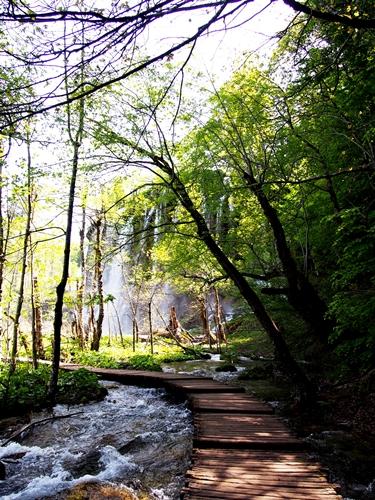 【クロアチア03】青と緑の美しいコントラスト。。世界遺産プリトヴィッツェ湖群国立公園 (14)