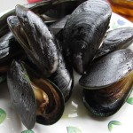 【チリ07】サーモン!ムール貝!!ウニ!!!チロエ島で海産物三昧の日々