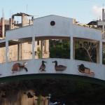 【エクアドル06】プエルト・バケリソ・モレノ/サンクリストバル島の宿、レストラン情報などあれこれ ガラパゴスPart5