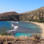【ハワイ02】The Busで行くオアフ島随一のシュノーケリングスポット・ハナウマ湾!